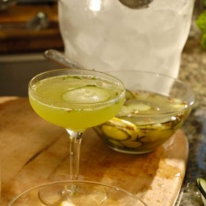 Classic Gin Mint Cocktail with Cucumber Spa Mix